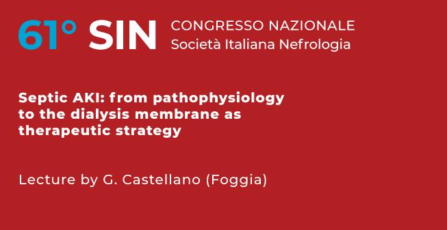 201020-SIN-2020_Castellano-653x337px